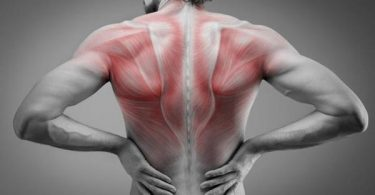 Common Causes of Thoracic Back Pain